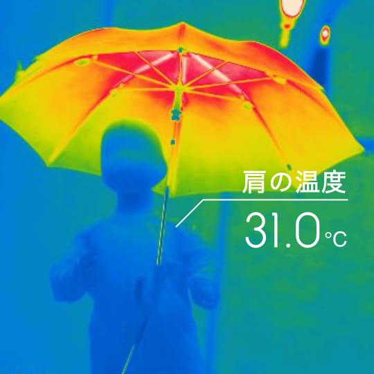 肩の温度 31.0℃
