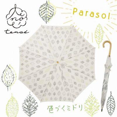 【tenoé(テノエ) NATURAL】レディース 晴雨兼用日傘 50cm 色づくミドリ
