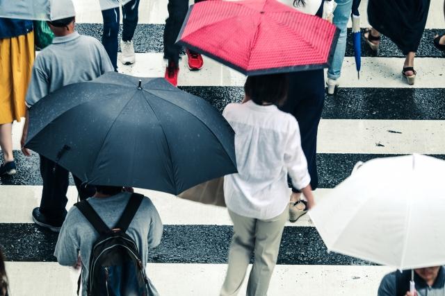 雨の横断歩道
