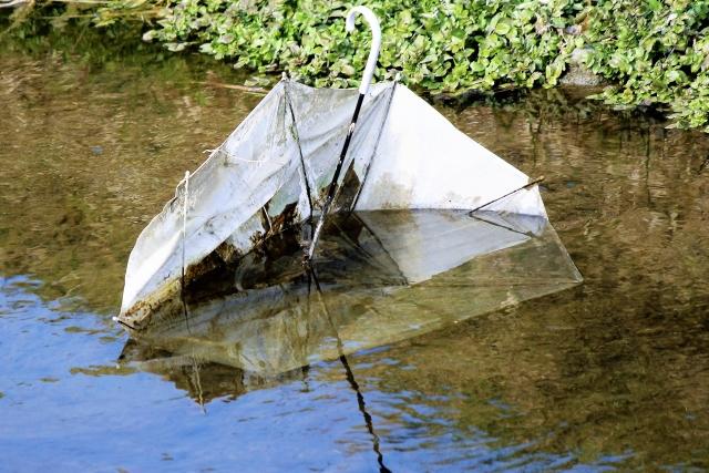 投棄された傘